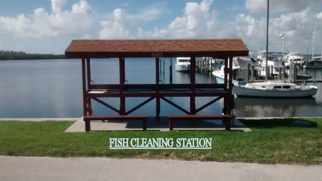 Fish-Cleaning-Station